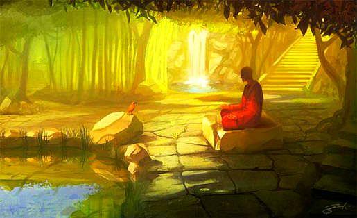forest.meditation33.jpg