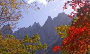 금강산 가을사진.PNG