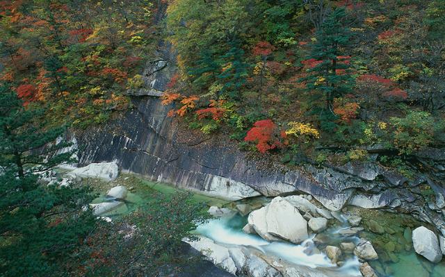 금강산 가을 사진.PNG