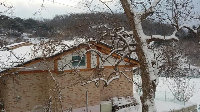 당-창문.png