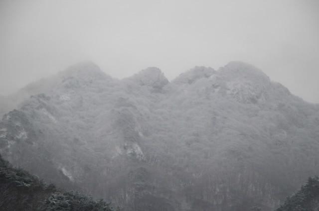 갑사의 사계-겨울 17-17.jpg