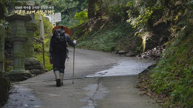 1200년 역사를 간직한 신성한 여정 시코쿠88개 사찰순례길.jpg