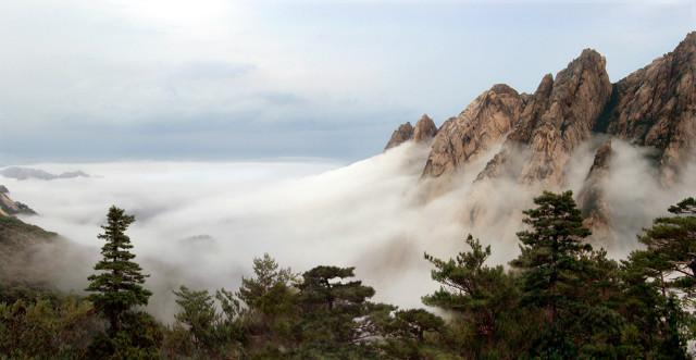 집선봉의 구름바다.jpg