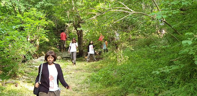 아침산행하는숲속판화여행참가자 2.jpg