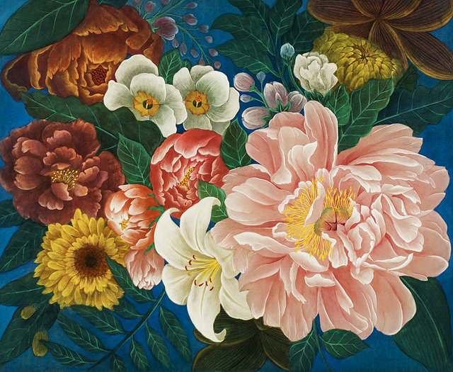 Flowers 김경아 38x50cm 비단에 진채 2018.jpg