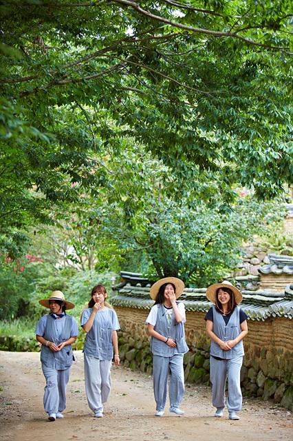 템플스테이 참가자들이 사찰을 걷고 있다_순천 송광사.jpg